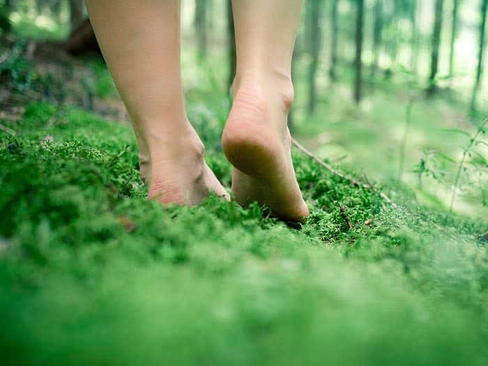 Walking barefoot in the forest Elina Visit Finland